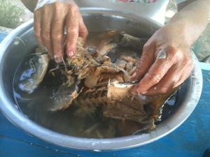 Preparing the Salt Fish